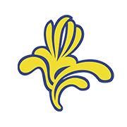 Region Bruxelles Capitale